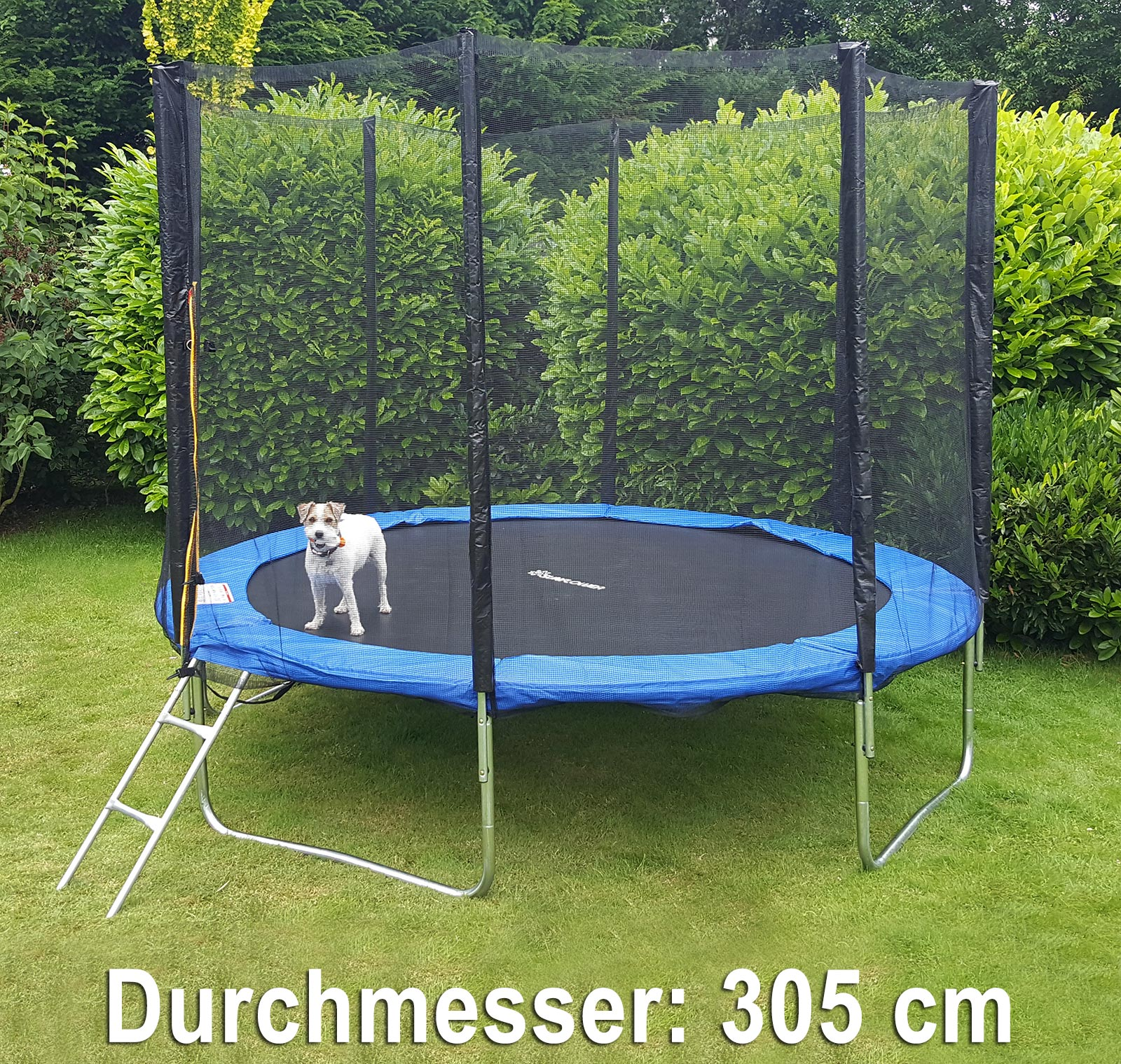 trampolin 305 cm komplett mit leiter und sicherheitsnetz blau ebay. Black Bedroom Furniture Sets. Home Design Ideas