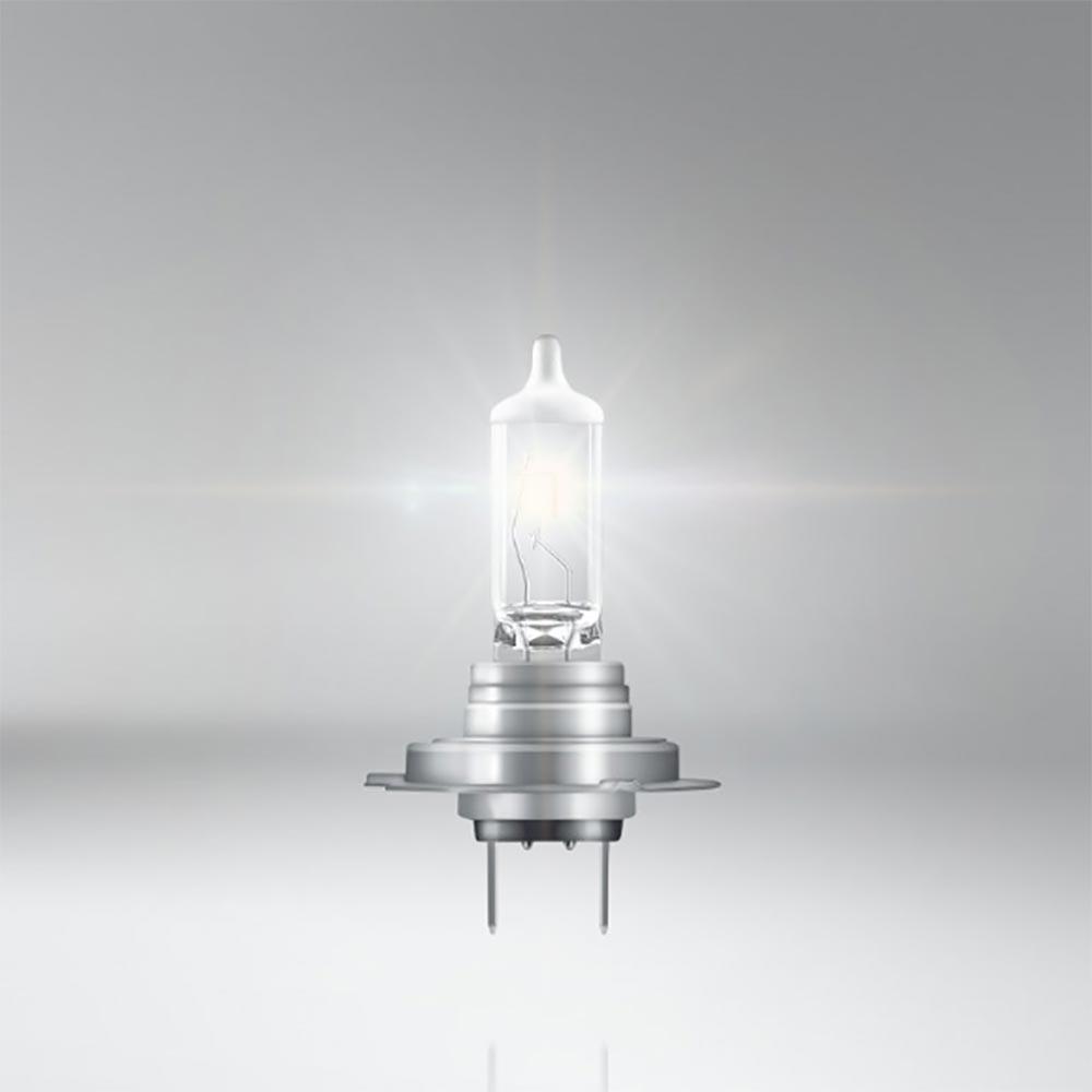 2 Stück H1 Xenon Max 100/% Licht 12V 55 W Halogen Lampen Autolampen Glühbirnen